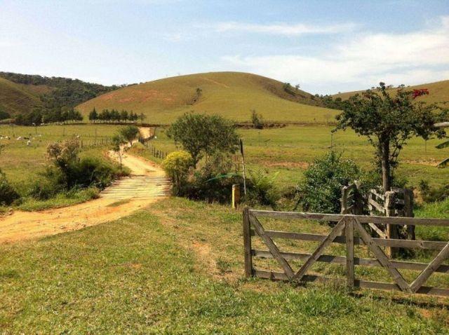 Fazenda excelente para boi - Cód 1505 - Foto 4