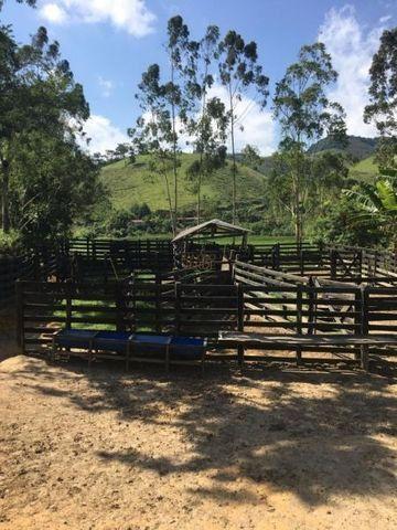 Fazenda boa e barata para boi - Cód 1713 - Foto 8