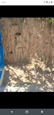 Vendo está Barraca de zinco (OPORTUNIDADE ÚNICA) Com Ponto Fixo. - Foto 5