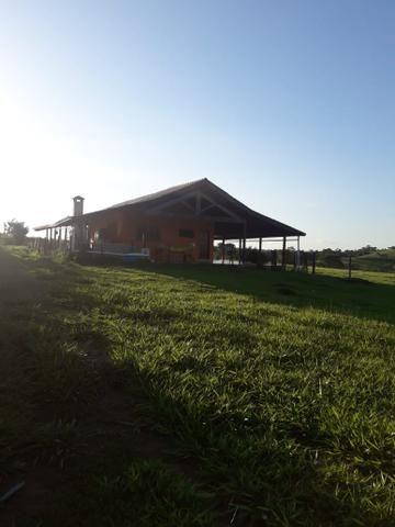 Fazenda - Conchas São Paulo - Foto 19