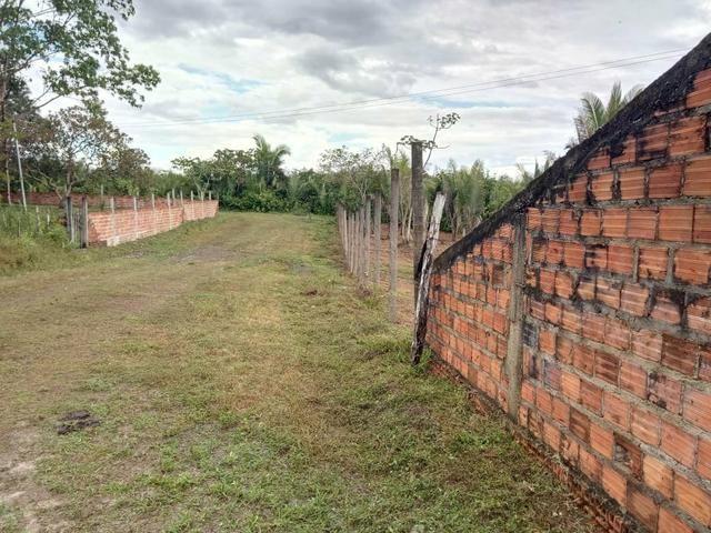 Venda de um sítio em Bacabeira.zap 98( * - Foto 6