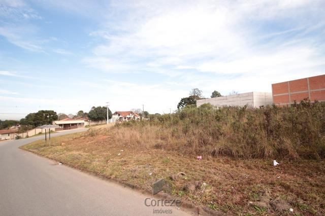 Terreno para locação no Barro Preto - Foto 8