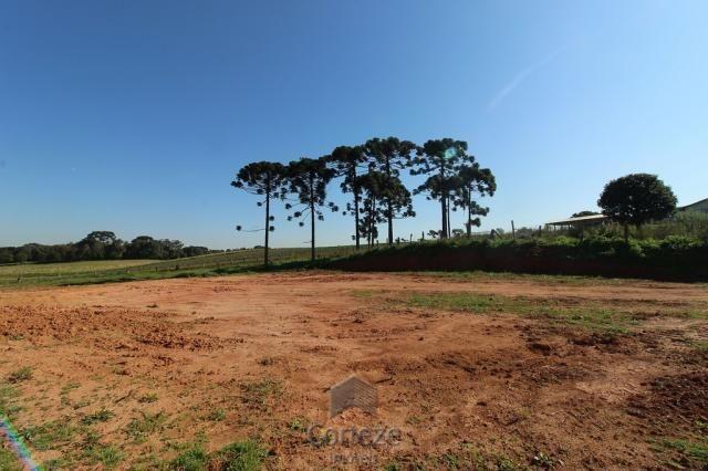 Terreno sem benfeitorias no Barro Preto - Foto 11