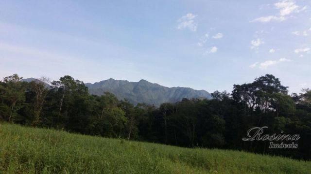 Terreno à venda, medindo 5000 m² por R$ 60.000 - Ponte Alta - Morretes/PR