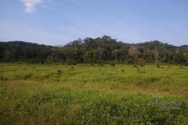 Terreno à venda, medindo 5000 m² por R$ 60.000 - Ponte Alta - Morretes/PR - Foto 2