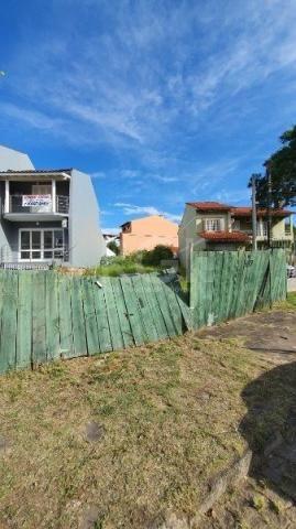 Terreno à venda em Aberta dos morros, Porto alegre cod:MI14799 - Foto 2