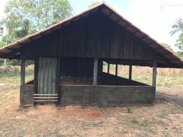 Excelente Fazenda para criação de gado - Foto 19