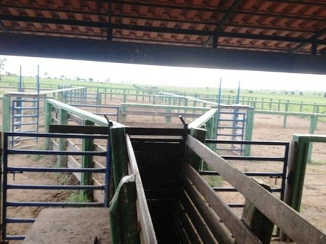 860 Alq. Pega 50% Imóveis Oferta Prazo C/ Entrada Guarani GO - Foto 8