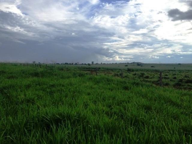 860 Alq. Pega 50% Imóveis Oferta Prazo C/ Entrada Guarani GO - Foto 16