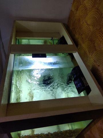 Aquário Grande 250 litros - Foto 5