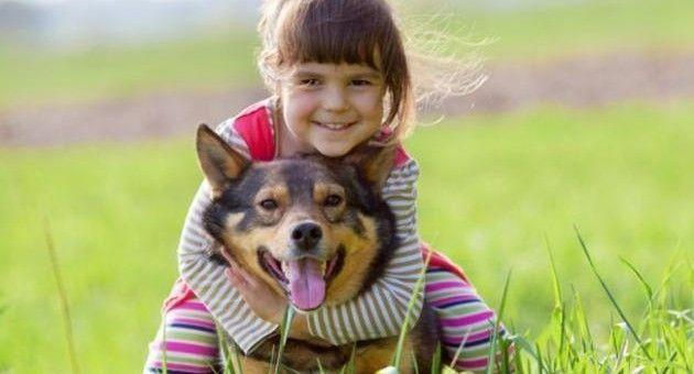 Babá para crianças e animais - diaria