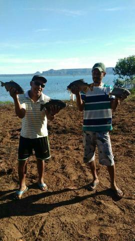 Terreno no lago do manso região quilombo