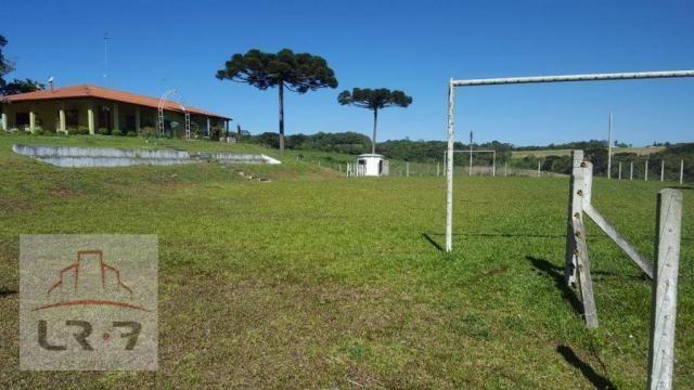 Chácara residencial à venda, Faxina, São José dos Pinhais. - Foto 14