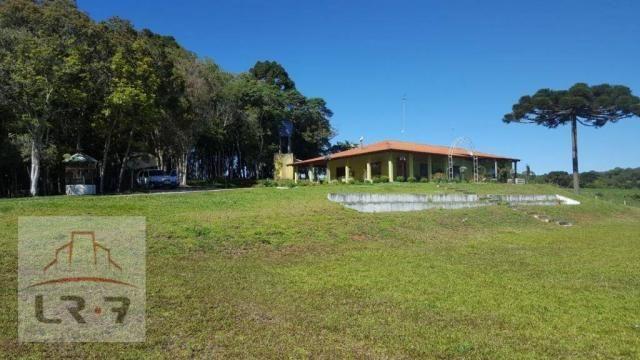 Chácara residencial à venda, Faxina, São José dos Pinhais. - Foto 2