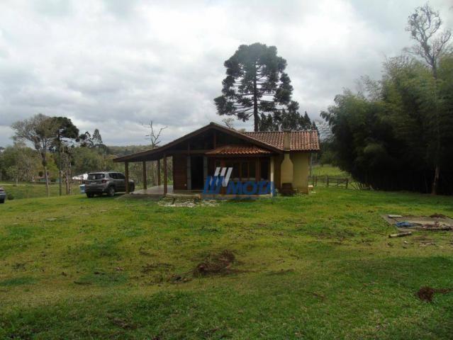 Chácara condomínio fechado são josé dos pinhais - Foto 7