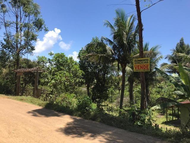 Fazenda na estrada Ilhéus/ Sambaituba - Foto 3