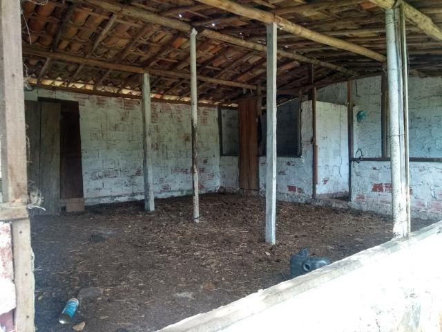 Vendo fazenda com 125 tarefas em Pojuca - Ba - Foto 5