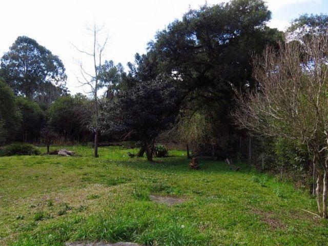 Terreno para alugar em Granja das acacias, Quatro barras cod:13074001 - Foto 4