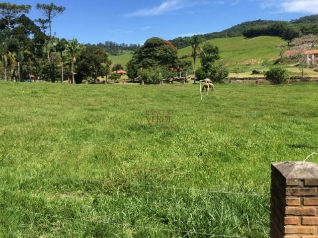 Bela Fazenda para boi - Cód 1877 - Foto 4