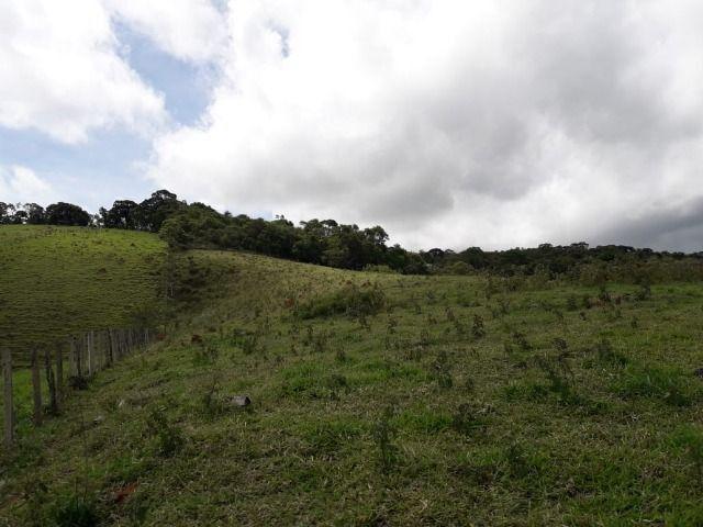 Fazenda no Vale - Cód 1585 - Foto 5