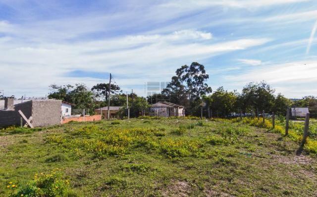 Terreno para alugar em Fragata, Pelotas cod:10284 - Foto 4