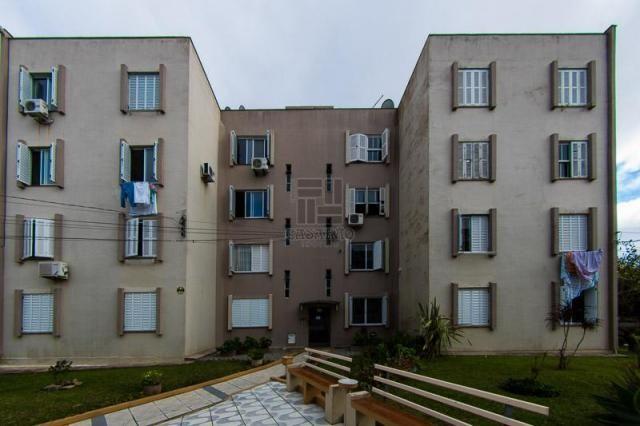 Apartamento para alugar com 3 dormitórios em Centro, Pelotas cod:8459 - Foto 2