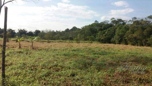 Terreno à venda, medindo 5000 m² por R$ 60.000 - Ponte Alta - Morretes/PR - Foto 3