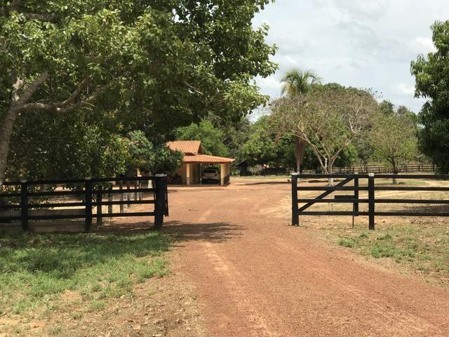 Excelente Fazenda para criação de gado - Foto 6