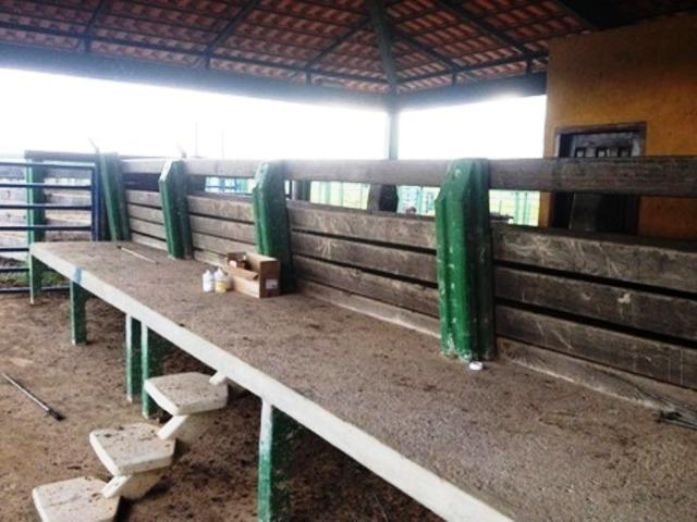 860 Alq. Pega 50% Imóveis Oferta Prazo C/ Entrada Guarani GO - Foto 7
