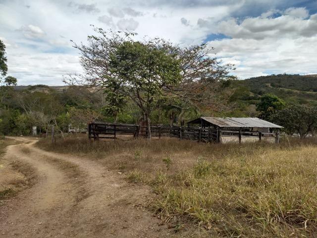 Fazenda Escriturada 90 Hect as Margens do Rio Areia Localizado Santo Antônio do Descoberto - Foto 6