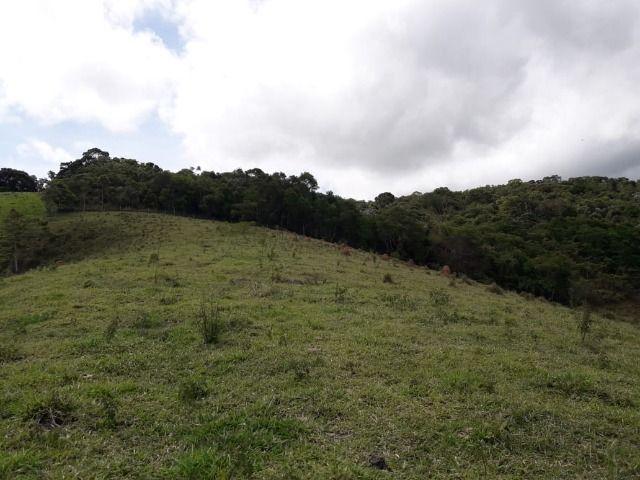 Fazenda no Vale - Cód 1585 - Foto 4