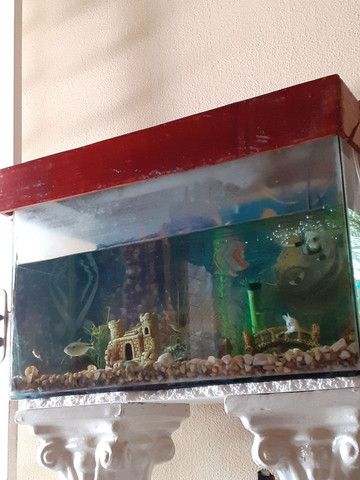 Aquario 90 litros - Foto 2