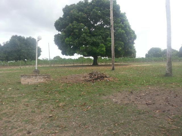 Fazenda em vera cruz com 45 hectares