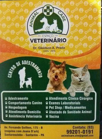 Espaço Veterinário Animal Care