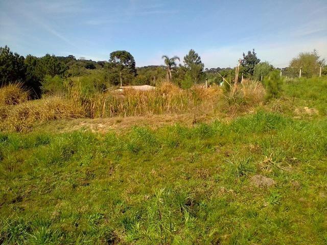 Terreno Rural - Foto 2