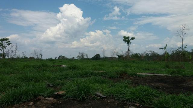 Colônia com 84 Hectares de terra Titulada - Foto 4