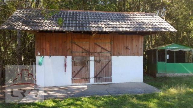 Chácara residencial à venda, Faxina, São José dos Pinhais. - Foto 5