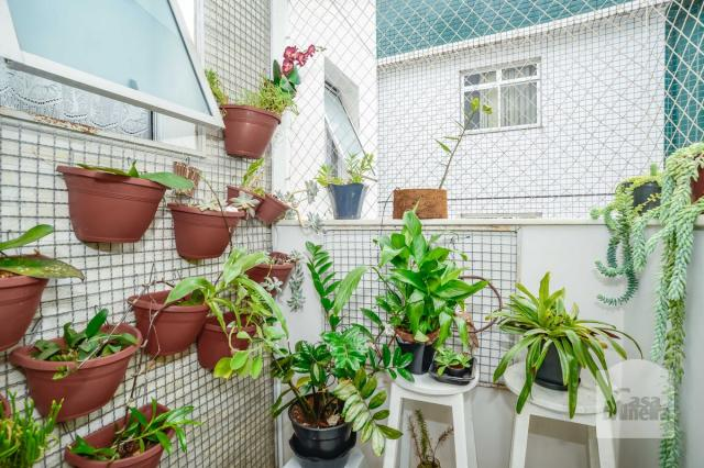 Apartamento à venda com 3 dormitórios em Caiçara-adelaide, Belo horizonte cod:250368 - Foto 15