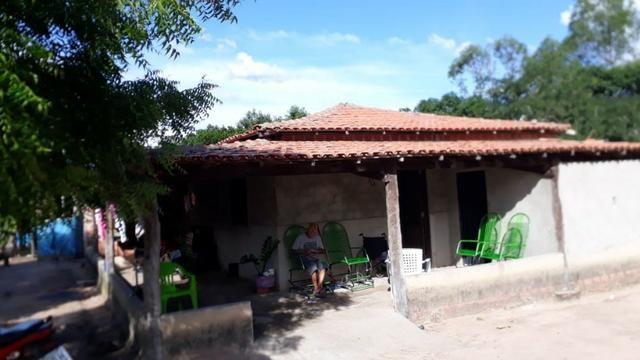 Fazenda com 150 hectares - Região da Soja (Balsas-MA) - Foto 7