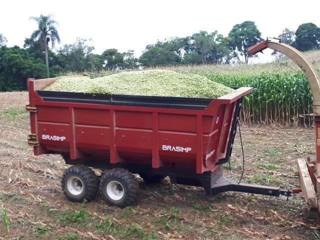 Carreta agrícola brasimp 8 toneladas - Foto 2