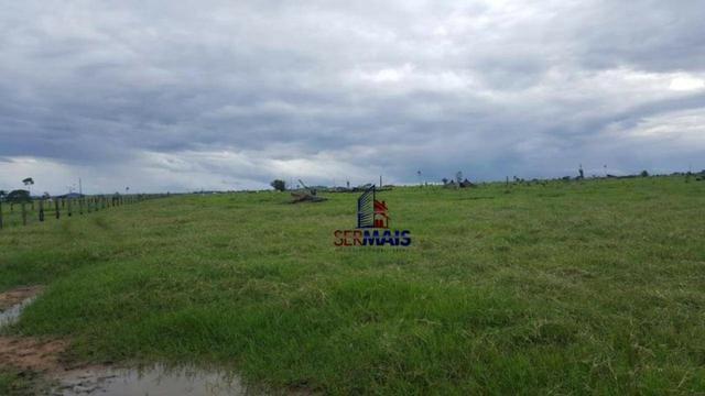 Fazenda Localizada na cidade de Buritis-RO - Foto 13