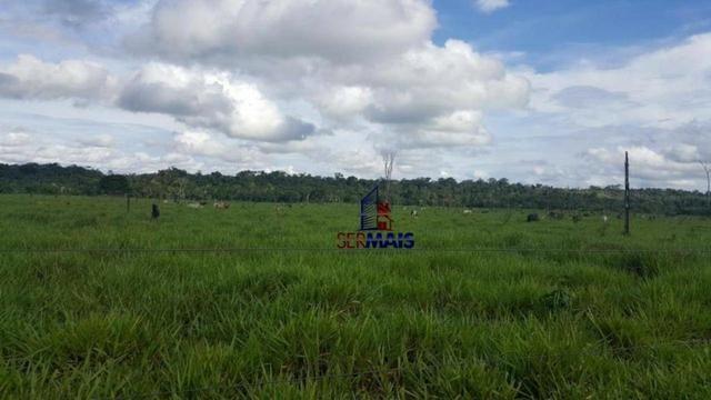 Fazenda Localizada na cidade de Buritis-RO - Foto 8