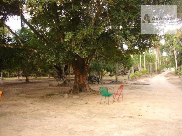 Chácara com 3 dormitórios à venda, 20000 m² por R$ 500.000,00 - Carne de Vaca - Goiana/PE - Foto 14