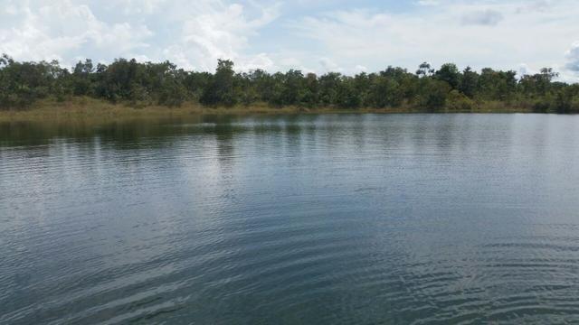 Sitio 120 hectares em Livramento - Foto 6