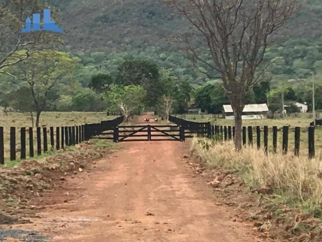 Fazenda 1850 has no município de Nobres-MT, na região de Bom Jardim; - Foto 17