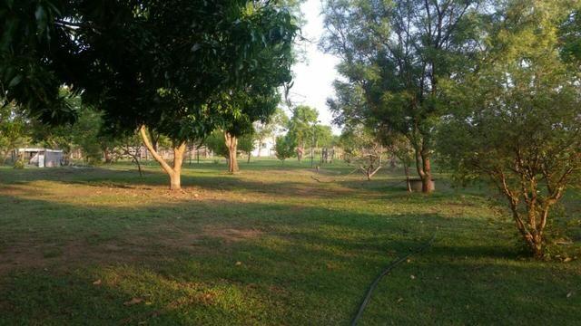 Sitio 120 hectares em Livramento - Foto 7