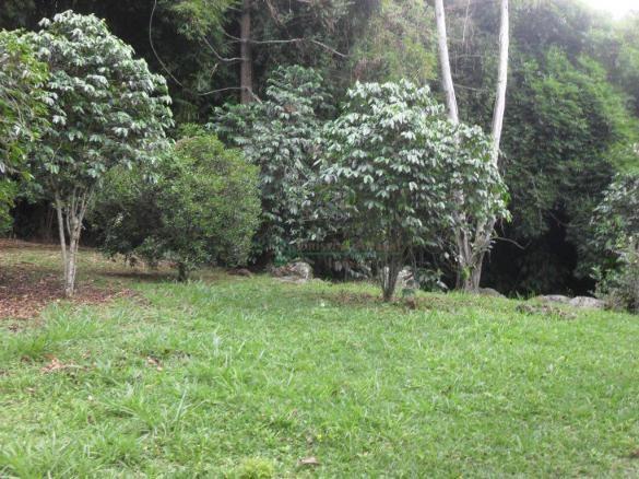 Sitio Teresópolis - Foto 11