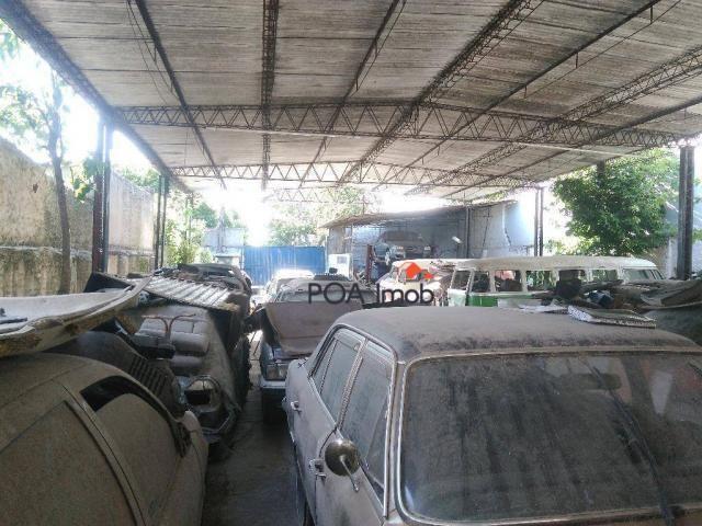 Terreno residencial à venda, Vila Ipiranga, Porto Alegre. - Foto 6