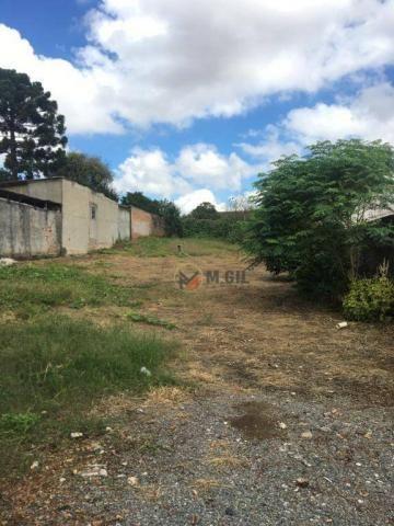 Terreno para locação comercial, Boqueirão - Curitiba - Foto 10