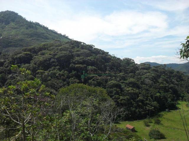 Sítiio em Teresópolis - Foto 20